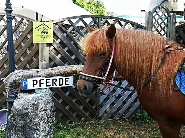 Parkplatz für Pferde