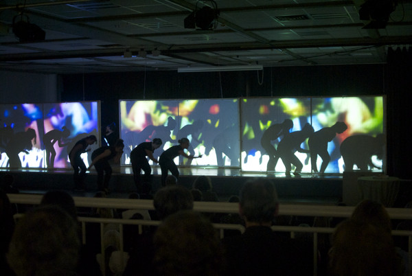 Hobbyfotografie am Limit: Videokunst und Tanz im Halbdunkel