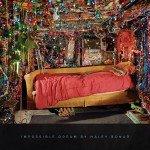 <b>Musik in 1.000 Zeichen: Haley Bonar – »Impossible Dream«</b>