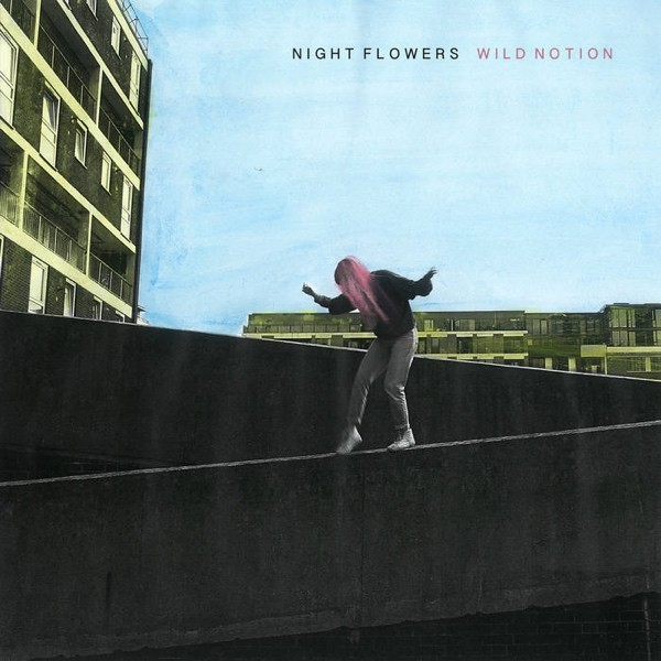 Night Flowers - Wild Notion